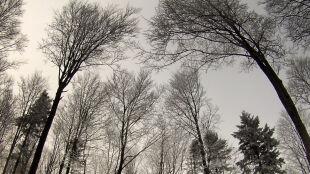 Pogoda na dziś: będzie przybywało chmur, zrobi się też wietrznie